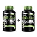 Tribulus Maximus 90 tbl. + druhý ZADARMO