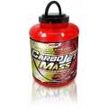 CarboJET Mass 1800g.
